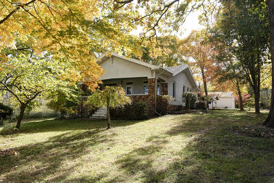 Ozark Single Family Home For Sale: 408 Bill Hanks Lane