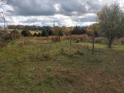 Nixa Residential Lots & Land For Sale: 1tract 2 Private Road