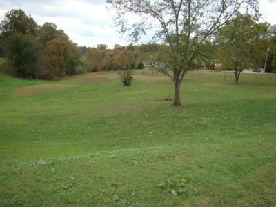 Residential Lots & Land For Sale: Tbd St. Johns Blvd.