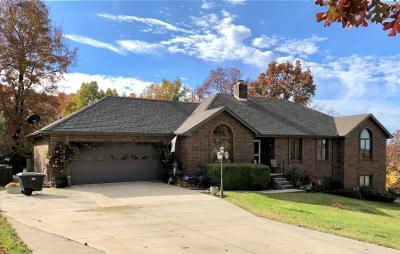Webster County Single Family Home For Sale: 460 Meadowview Drive
