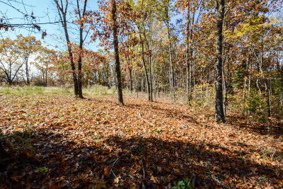 Branson  Residential Lots & Land For Sale: 189 & 217 North Ridge Place