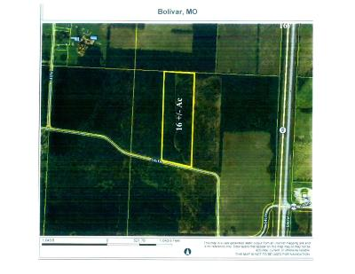 Polk County Residential Lots & Land For Sale: Tract 2-B 545th Road