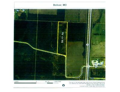 Polk County Residential Lots & Land For Sale: Tract 2-C 545th Road