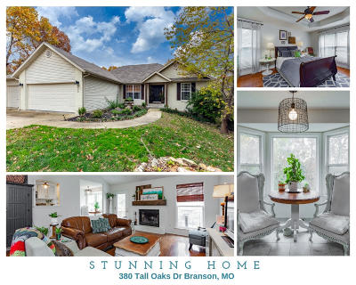 Branson MO Single Family Home For Sale: $240,000