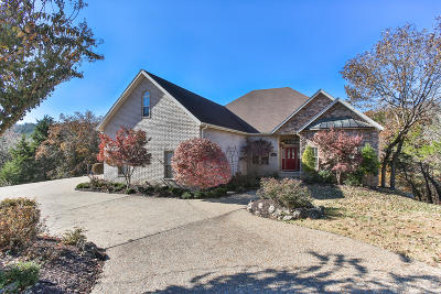 Branson Single Family Home For Sale: 112 Summerwood Drive
