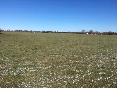 Strafford Residential Lots & Land For Sale: Tbd East Farm Road 116