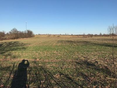 Republic Residential Lots & Land For Sale: 6250 South Farm Rd 67