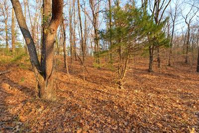 Ozark Paradise Village Residential Lots & Land For Sale: Tbd Red Bud Lane