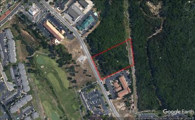Commercial For Sale: Tbd Wildwood Drive