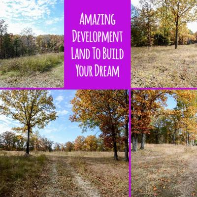 Branson  Residential Lots & Land For Sale: Lot 2 Bee Creek Road