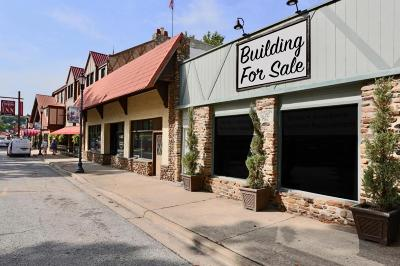 Taney County Commercial For Sale: 18 Downing Street