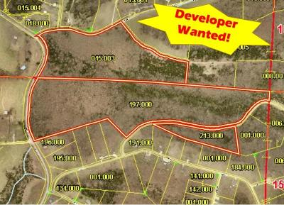 Cape Fair Residential Lots & Land For Sale: Tbd State Hwy 173 & Mulberry Drive