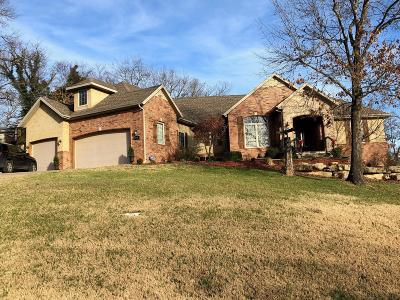 Taney County Single Family Home For Sale: 154 South Drive