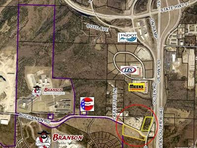 Taney County Commercial For Sale: 297 Buchanan Road