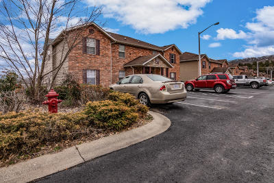 Branson  Condo/Townhouse For Sale: 2909 Vineyards Parkway #2
