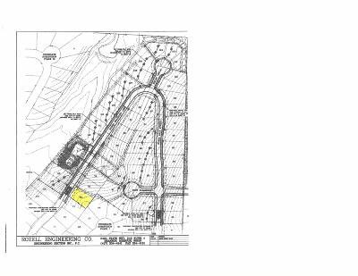 Ozark Residential Lots & Land For Sale: Lot 75 Bradbury #Stone Ga