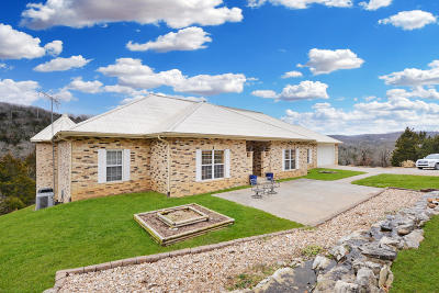 Galena MO Single Family Home For Sale: $595,000
