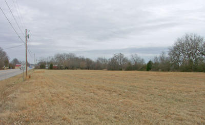 Christian County Commercial For Sale: 1204 West Mt. Vernon