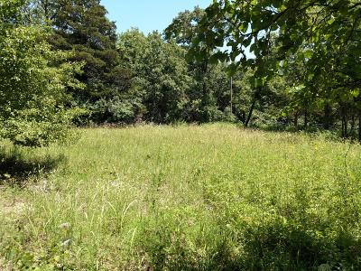Reeds Spring Residential Lots & Land For Sale: 246 9 Center Court