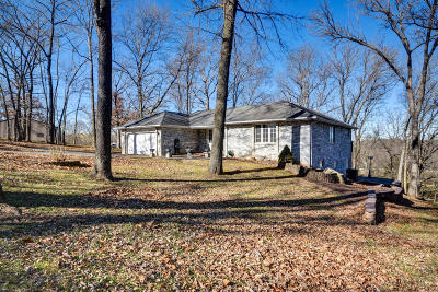 Ozark Single Family Home For Sale: 227 Nebraska