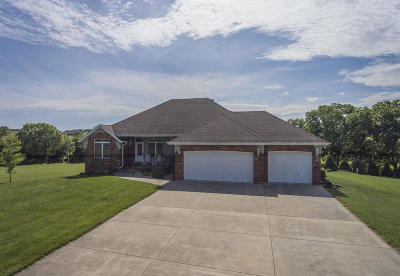 Ozark Single Family Home For Sale: 3123 West State Hwy F