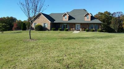 Taney County Single Family Home For Sale: 351 Ventura Drive