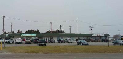 Cedar County Commercial For Sale: 1225 South Hwy 39