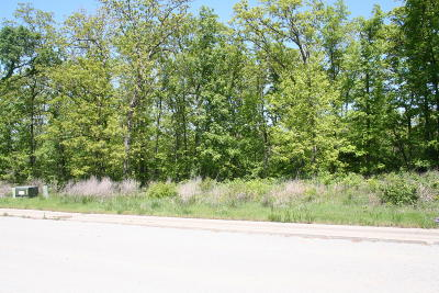 Branson  Residential Lots & Land For Sale: Tbd Ashbrooke Drive