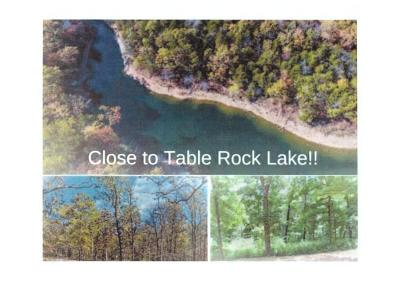 Stone County, Taney County Residential Lots & Land For Sale: Tbd Lot 38 Millwood Road