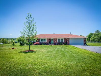 Rogersville Single Family Home For Sale: 7036 East Farm Road 164