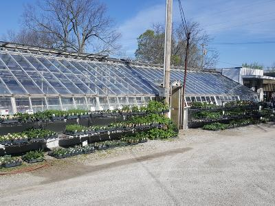 Webster County Commercial For Sale: 402 West Maple Street
