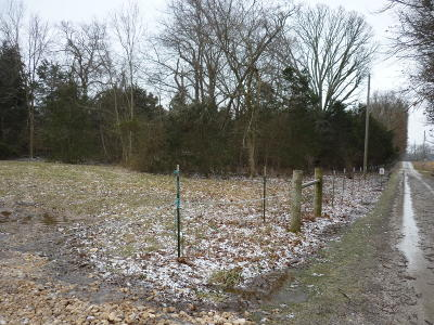 Rogersville Residential Lots & Land For Sale: 0-4 East Farm Road 194