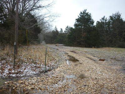 Rogersville Residential Lots & Land For Sale: 0-5 East Farm Road 194