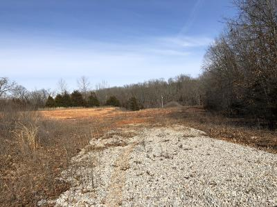 Reeds Spring Residential Lots & Land For Sale: B2 Main St.