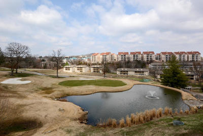 Branson  Condo/Townhouse For Sale: 243 Clubhouse Drive #22