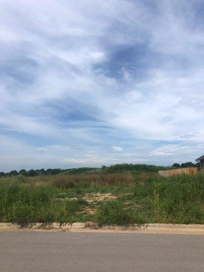 Ozark Residential Lots & Land For Sale: Lot 519 River Pointe Phase 1