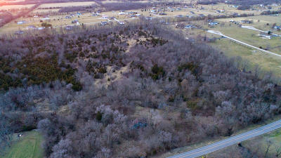 Clever Residential Lots & Land For Sale: 739 State Highway P