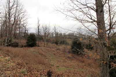 Highlandville Residential Lots & Land For Sale: Lot 1 Woods Fork Road