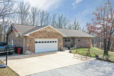 Ozark Paradise Village Single Family Home For Sale: 291 Ozark Road
