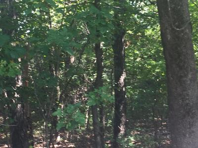 Branson MO Residential Lots & Land For Sale: $80,000