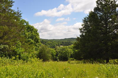 Forsyth Residential Lots & Land For Sale: Tbd State Hwy H Or 160/Ingenthron Lane