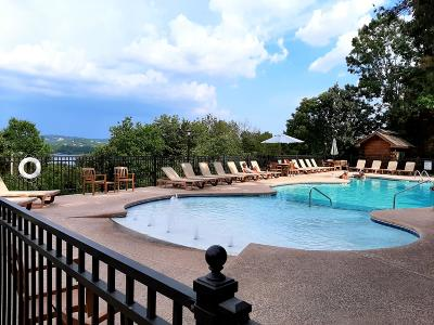 Branson, Indian Point Condo/Townhouse For Sale: 24 Village Trail #6