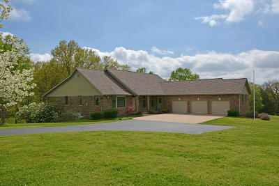 Ozark Single Family Home For Sale: 1411 Collins Road