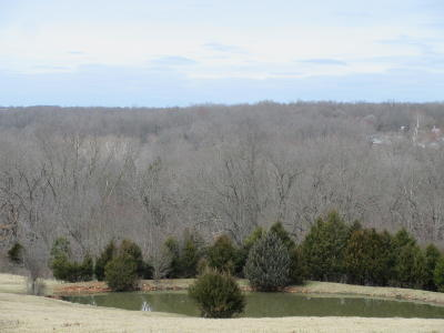 Rogersville Residential Lots & Land For Sale: 4398 South Farm Rd 193