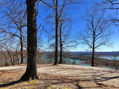 Galena Residential Lots & Land For Sale: 7396 State Hwy Y #Lot 10