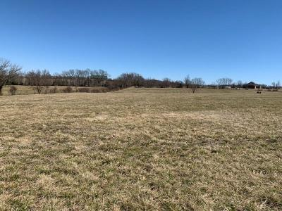 Ozark Residential Lots & Land For Sale: Lot 11 Kings Court