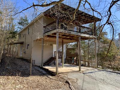 Branson Single Family Home For Sale: 546 Lakewood Road