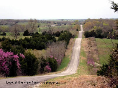 Polk County Residential Lots & Land For Sale: Tbd Highway Vv
