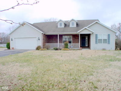 Branson MO Single Family Home For Sale: $248,900