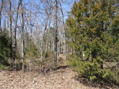Saddlebrooke Residential Lots & Land For Sale: Tbd Ridge Crest Drive